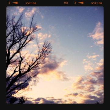 日が伸びましたねぇ〜( ´ ▽ ` )ノ