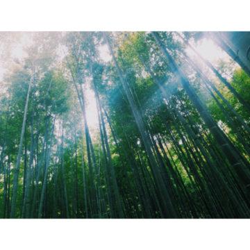 鎌倉〜!〜代官山の美容院BEKKUのブログ〜