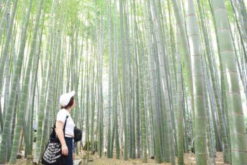 湘南が好き 代官山.恵比寿の美容院BEKKUのブログ