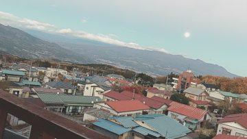 🎍あけましておめでとうございます!🐗✨~恵比寿・代官山の美容院BEKKUヘアサロンのブログ~