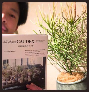 《緑》を増やしたいのです(^^)    〜恵比寿・広尾の美容院BEKKUヘアサロンのブログ〜