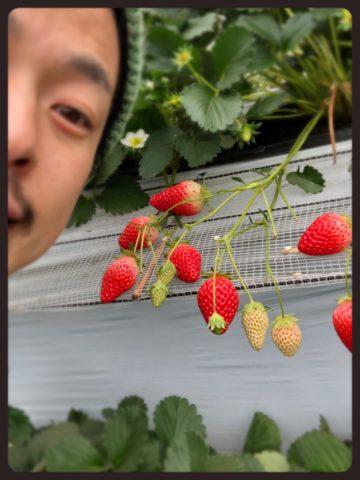 春旅行と言えばっ!(^^)  〜恵比寿・広尾の美容院BEKKUヘアサロンのブログ〜