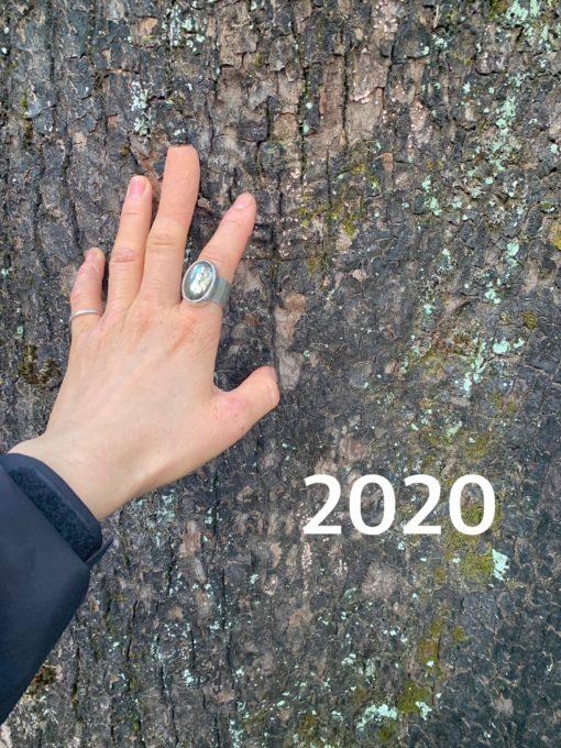 2020年の振り返り〜SHOKO ver〜