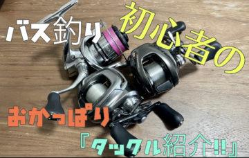 【初心者の釣りチャンネル】タックル紹介!!✨YouTubeアップしました✨