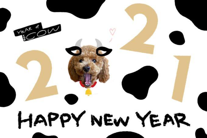 【2021年】新年のご挨拶〜ASUKA ver〜